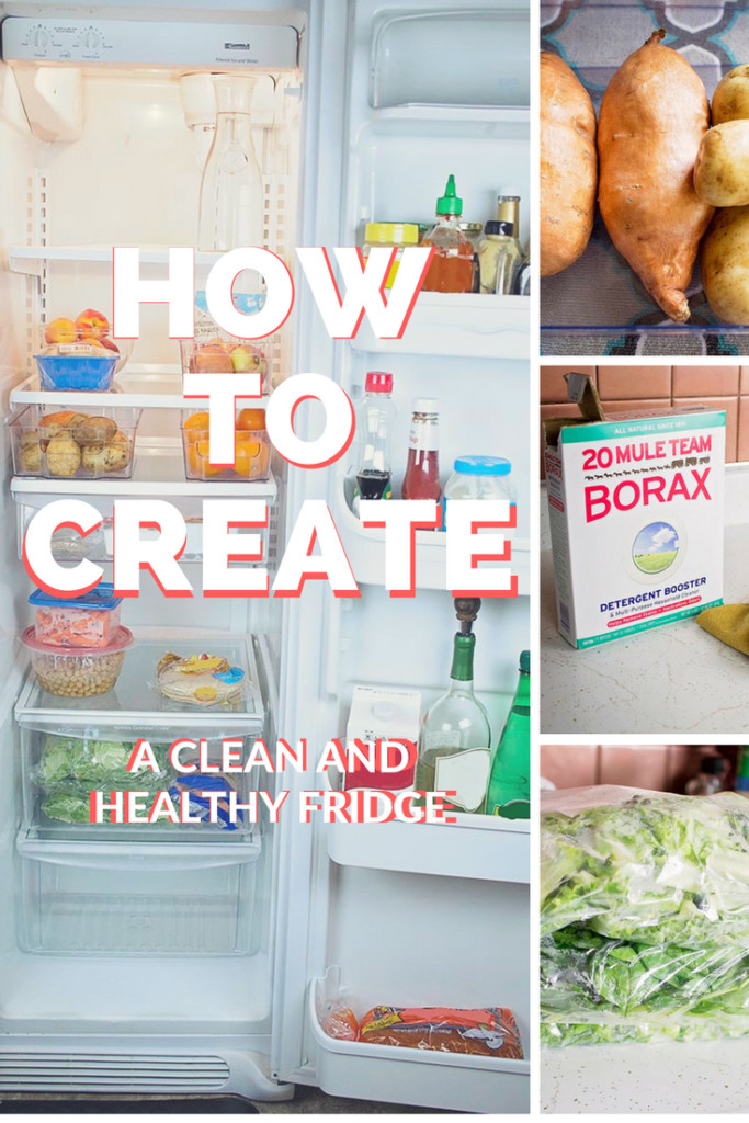 How To Create A Clean and Healthy Fridge – The House of Plaidfuzz